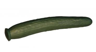 1ATOYSSHOP - Eine geile Gurke vaginal und oder anal